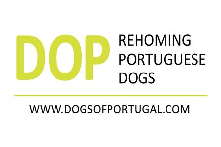 DOP logo