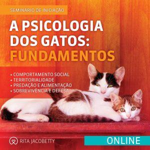 Seminário A Psicologia dos Gatos Fundamentos (online)